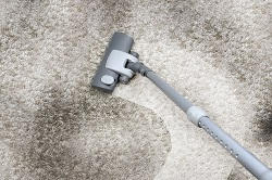 Dry and Steam Carpet Clean London